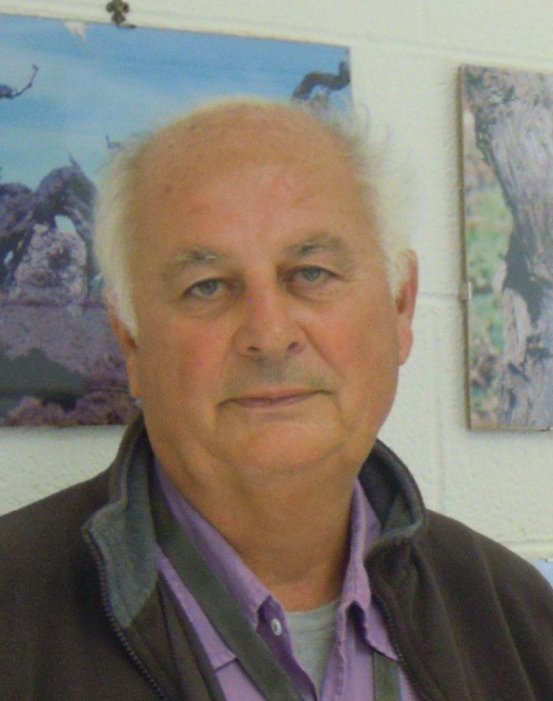 Ing. Martino Bandelloni