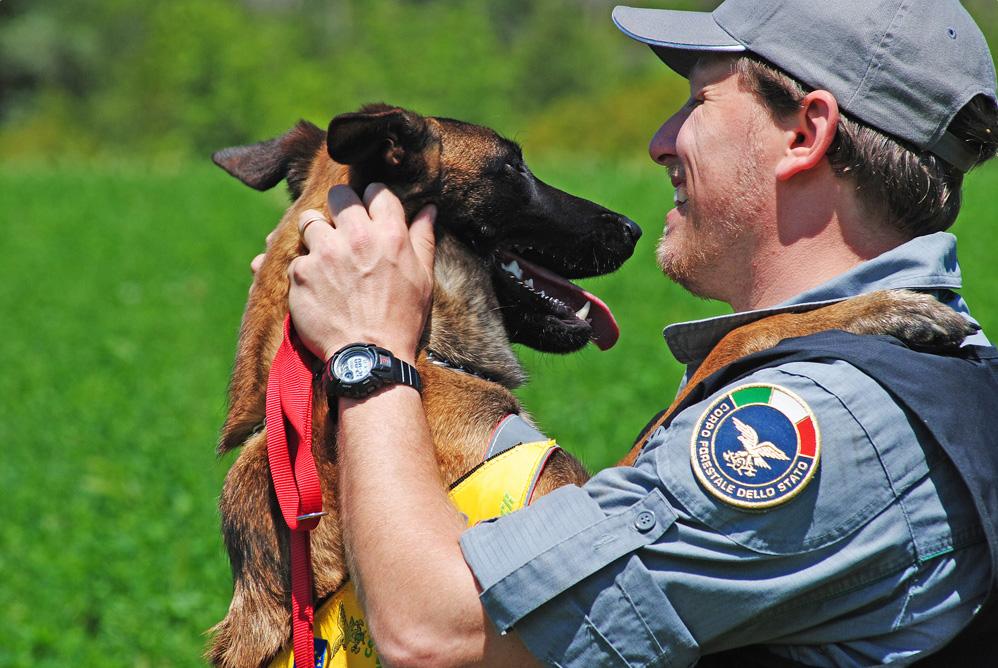 Puma, il cane addestrato al ritrovamento veleni